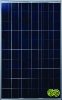 Polycrystalline PV Cell Module photo